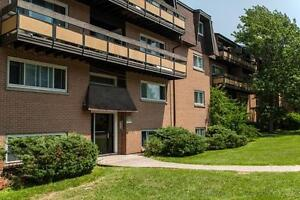 3 Bedroom Available Now. Only $1050 for This Massive Apartment!