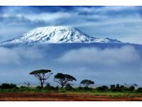 Flights to Kilimanjaro 28th jan-13th feb with one day stop over in Istanbul (Turkish Arlines
