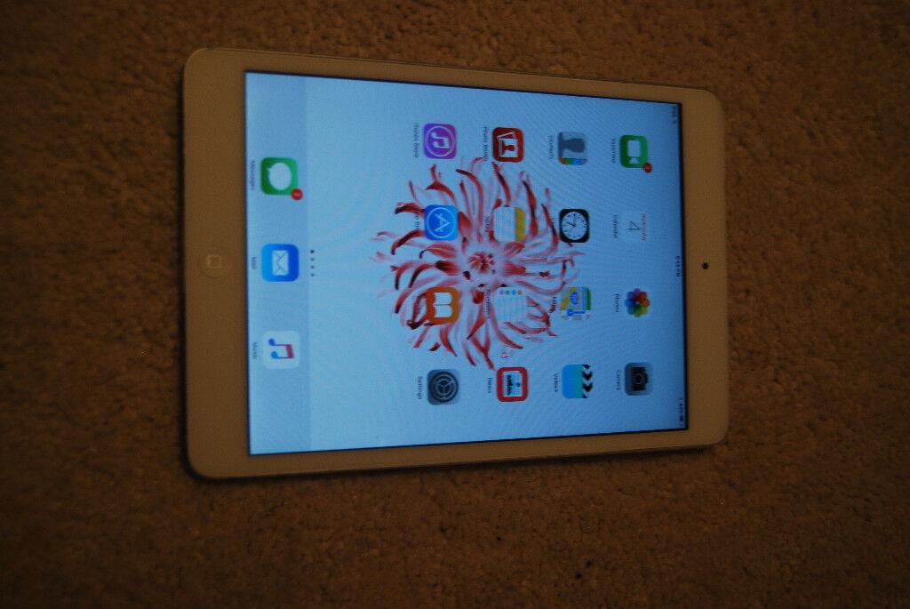 ipad mini 16GB WiFi+Cellular white and sliver