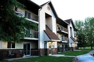 2 Bedroom Apt With In-suite Laundry Avail October