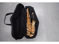 Trevor James Horn Classic Alto Saxophone £470