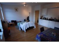 Brand new, interior designed one double bedroom apartment in Crystal palace !
