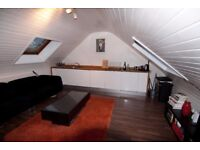 Spacious, 1 bedroom attic flat with open-plan kitchen living room available December!