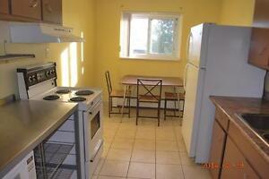 FURNISHED 3 BEDROOM STUDENT APTS * 1 MTH FREE * $450 *FREE UTILS Kitchener / Waterloo Kitchener Area image 3