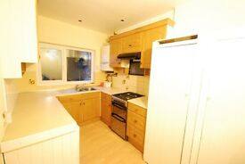 Massive three bedroom house with decent bathroom and large sitting room and have got lovely garden