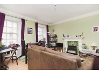 Attractive, 1 bedroom, traditional flat with WiFi next to the Meadows available November!