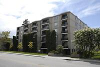 1 BEDROOM STES, ROTH TOWERS, 1938 PANDOSY ST