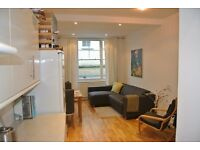 Large 2 double bedroom 2 bathroom garden flat on Lexham Gardens close to Kensington and earls court