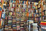 The Book Mogul