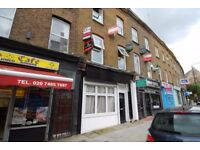RECENTLY REFURBISHED TWO BEDROOM FLAT with a private garden (Camden Town)