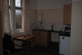 Large Studio Flat in Ealing