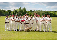 Join Our Cricket Team - Wimbledon & Raynes Park