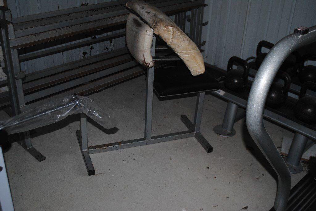 Heavy Duty Preacher Curl Bench - Weights Gym
