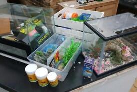 Terrarium Job Lot - New With Everything