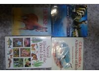 Assortment of Descriptive, illustrated Animal Books