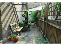 BEAUTIFUL DBL IN CONSCIOUS VEGETARIAN FLAT SHARE - CENTRAL LOCATION