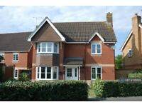 3 bedroom house in Dart Drive, Didcot, OX11 (3 bed) (#1181669)