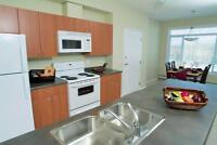 One Month Free - Two Bedroom Suites in Parkland Setting