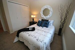 Pet Friendly Two Bedroom Apartment w insuite laundry NE Edmonton Edmonton Edmonton Area image 7