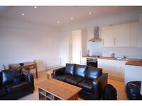 Penthouse suite in Clapham Junction - Stunning!