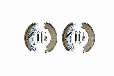 Bremsbacken passend für Knott  Bremse 20-2425/1 Größe 200 x 50mm        90178