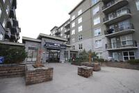 Modern apartment in Clareview!
