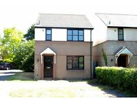 Peaceful and spacious 3 bedroom detached house to rent, Maio Road, Cambridge