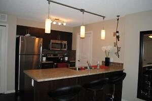 Furnished 2 bedroom condo in Ambleside! Close to Henday!