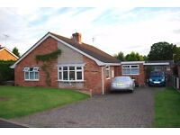 3 Bedroomed, detached bungalow for rent