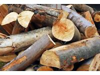LOGS WANTED FREE COLLECTION