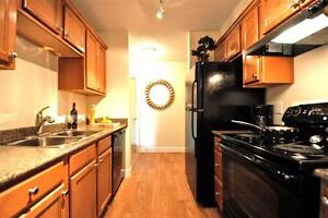 Spacious Newly Renovated One Bedroom Apartment Available!