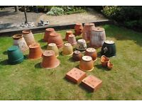Garden pots all shapes and sizes plastic and terricotta