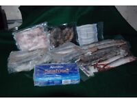 Frozen Sea / Pike fishing bait, mixed lot Over £60 worth