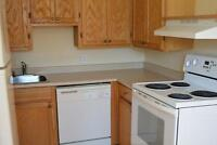 2 Bedroom Apt for Rent - Close to CCNB- 1st Month Rent 1/2 OFF!