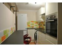 Highly specified two room flat for professionals, primary area for hospitals, university,city centre