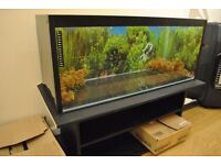 Aquarium 36 inches x 15 inches x 12 inches