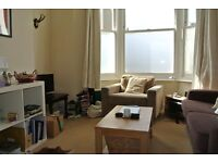 Large 1 double bedroom garden apartment close to Clapham North underground station
