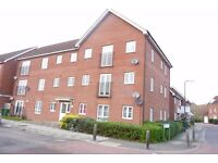 Thamesmead SE28. **AVAIL NOW** Modern and Spacious 1 Bed Furnished Flat on Quiet Street