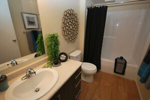 Pet Friendly Two Bedroom Apartment w insuite laundry NE Edmonton Edmonton Edmonton Area image 6