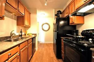 Spacious Newly Renovated Two Bedroom Apartment Available!