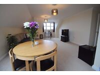 Beautiful Two bedroom flat to rent in Springbourne!