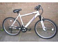 Apollo Exclusive Ladies Bike White