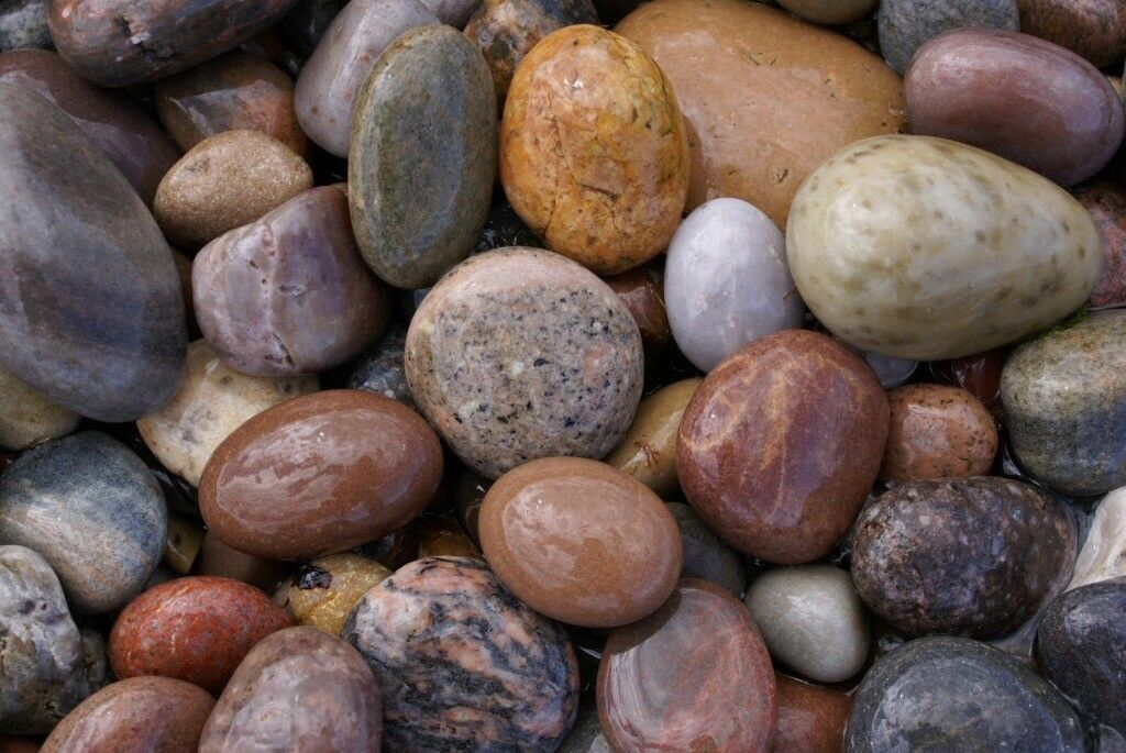 20-30 moray pebble