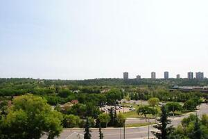 River Valley views from 2 bdrm furnished condo at the Horizon!