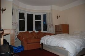 Double Room in a great location available from 12th of August