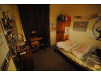 Single room to rent - short let for June and July- £350 pcm inc. bills -Female 21+ preferred