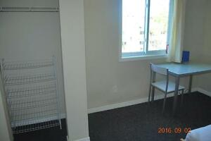 LEASE TAKEOVER * 1 furnished room in all female apartment * $515 Kitchener / Waterloo Kitchener Area image 5