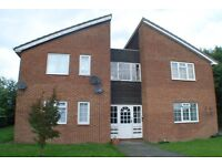 Studio Apartment in Crawcrook £295pcm