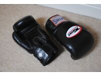 Muay Thai Gloves and Equipment - Hand Wraps, Shin Guards, Jump Rope + Other (Boxing/MMA/Kick Boxing)
