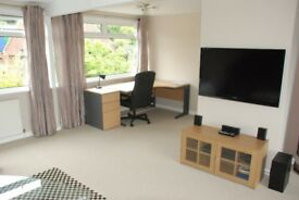 LUXURY STUDENT ROOMS - LAST 2 SUITES AVAILABLE